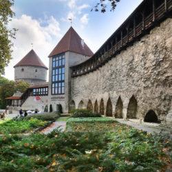 музей-кафе «Девичья башня»