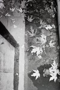 """Fotomuuseumi trepigaleriis Theo Efrose näitus """"Esimene"""""""