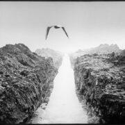 LEND 1, Peeter Langovits, 1979